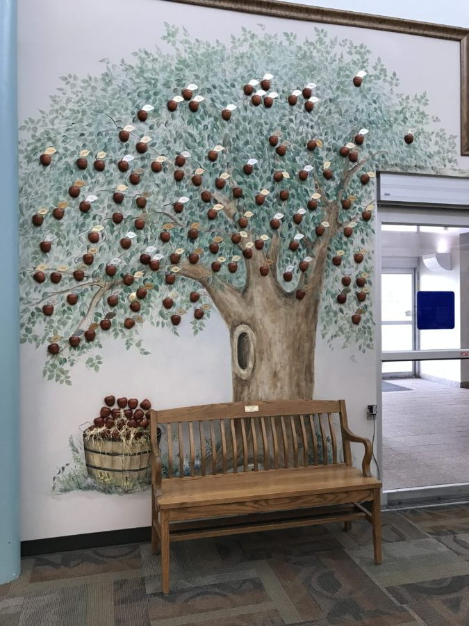 History of the Library Apple Tree